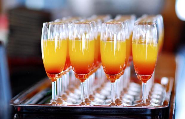 фотографии Alova Gold Cruises Ha Long изображение №8