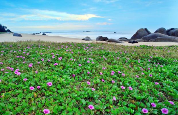 фото Thuy Duong Beach Resort изображение №14