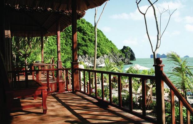 фото Monkey Island Resort изображение №18