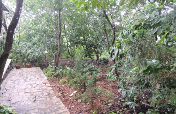 фото Garden Homestay изображение №14
