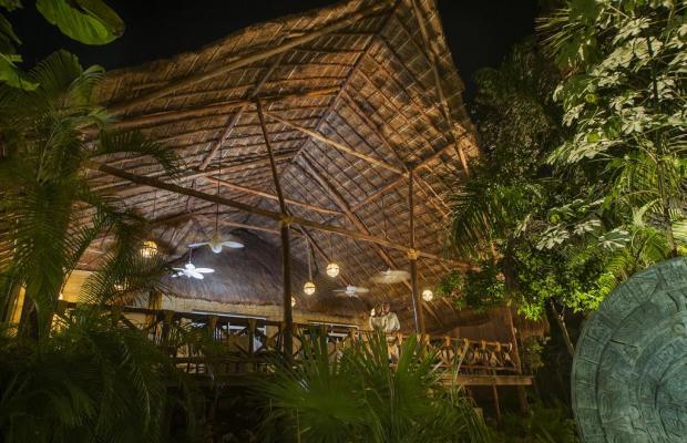 фотографии отеля Viva Wyndham Azteca изображение №27