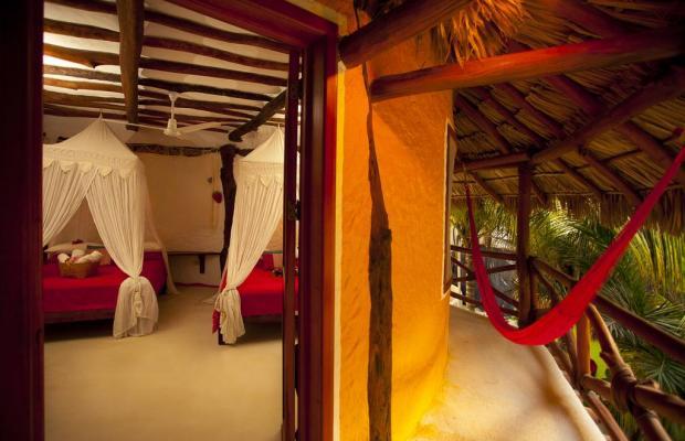 фото отеля Casa Las Tortugas изображение №21
