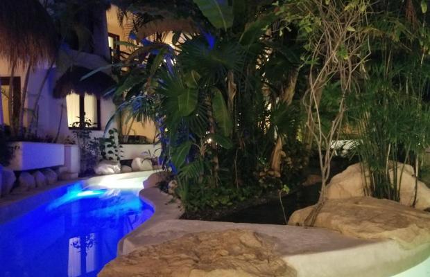 фотографии отеля La Tortuga Hotel & Spa изображение №19