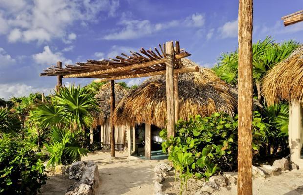 фото отеля Papaya playa изображение №21
