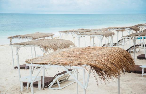 фото отеля Papaya playa изображение №17