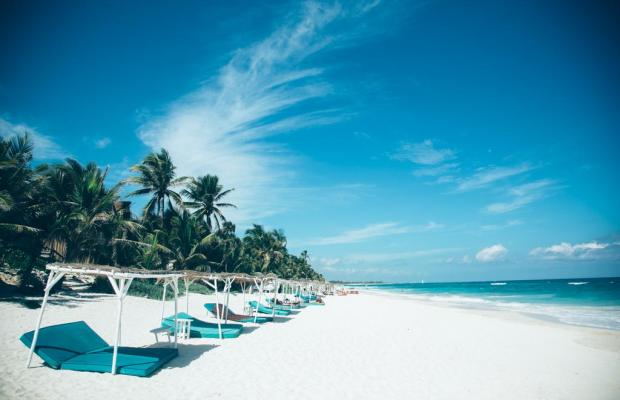 фото Papaya playa изображение №14
