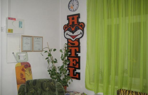фото отеля Tiger изображение №9