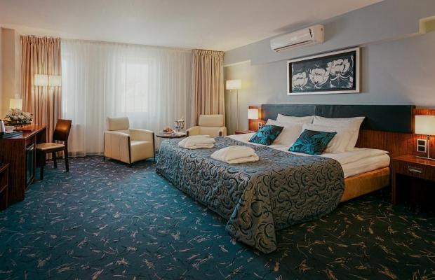 фотографии отеля Avalon изображение №23