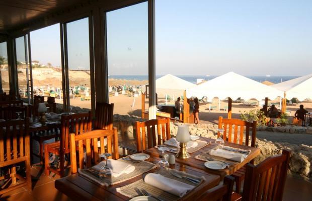 фото отеля Domina Coral Bay Elisir Sublime Club (ex. Domina Coral Bay Hotel Elisir) изображение №5