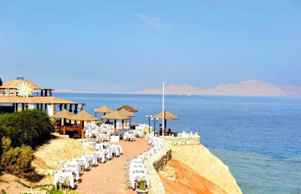 фотографии отеля Domina Coral Bay Oasis Resort (ex. Domina Hotel & Resort Oasis) изображение №11