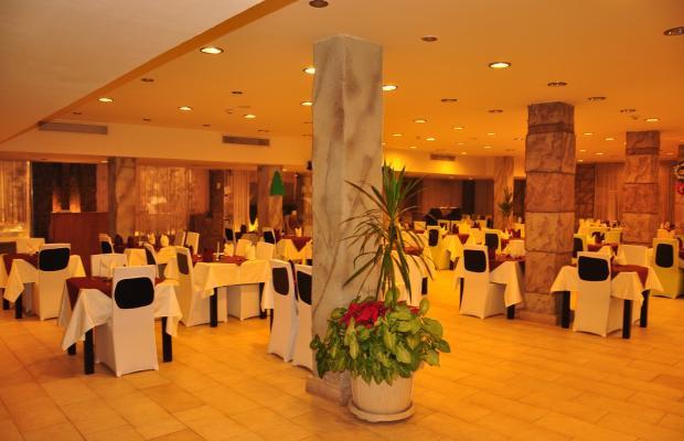 фотографии отеля El Hayat Sharm Resort изображение №3
