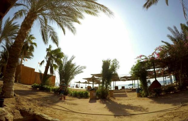 фото отеля Panda Resort изображение №21