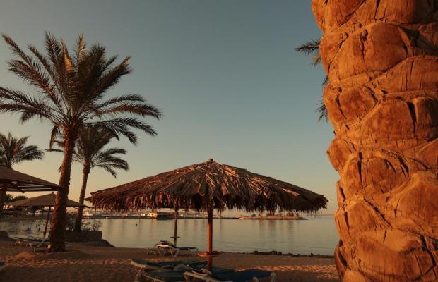 фото отеля Continental Hotel Hurghada (ex. Movenpick Resort Hurghada, Continetal Resort Hurghada; InterContinental Resort & Casino) изображение №21