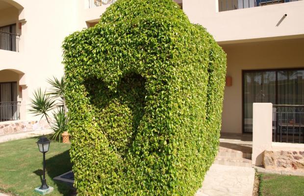 фото отеля Jaz Solaya Resort (ex. Solymar Solaya Resort) изображение №13