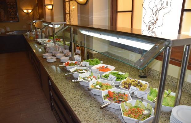 фотографии отеля Jaz Solaya Resort (ex. Solymar Solaya Resort) изображение №7