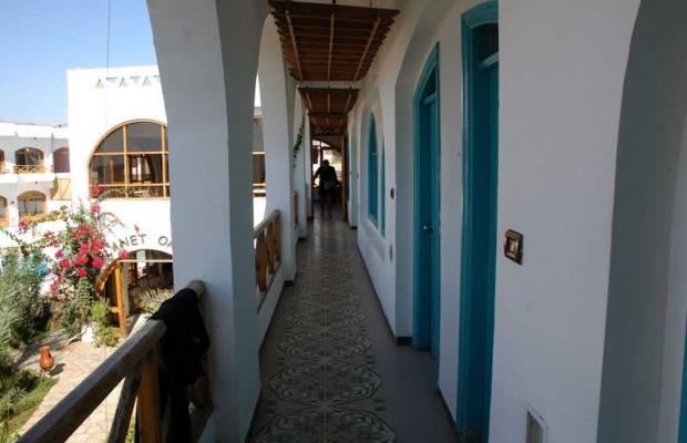 фото Hotel Planet Oasis изображение №22