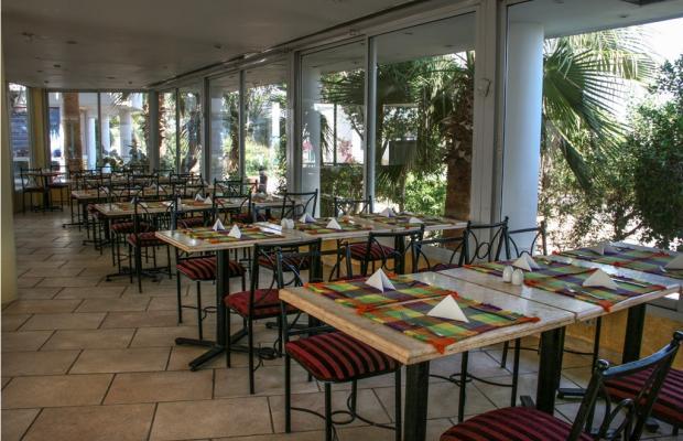 фото отеля Sunset Sharm изображение №21