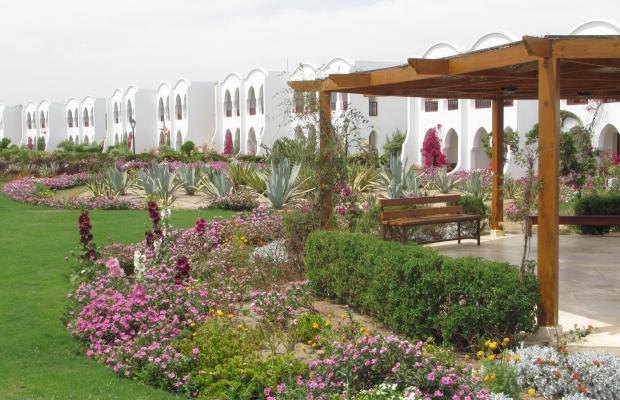 фотографии отеля Gorgonia Beach Resort изображение №39