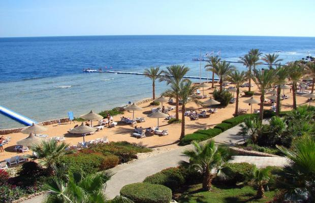 фотографии отеля Queen Sharm Resort изображение №15