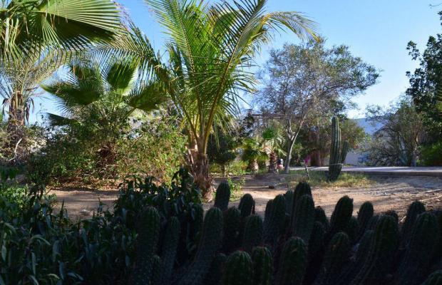 фото Mangrove Bay Resort изображение №26