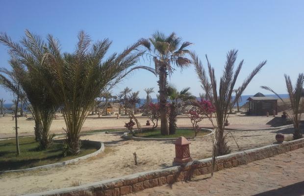 фотографии отеля Zabargad Beach Resort изображение №23