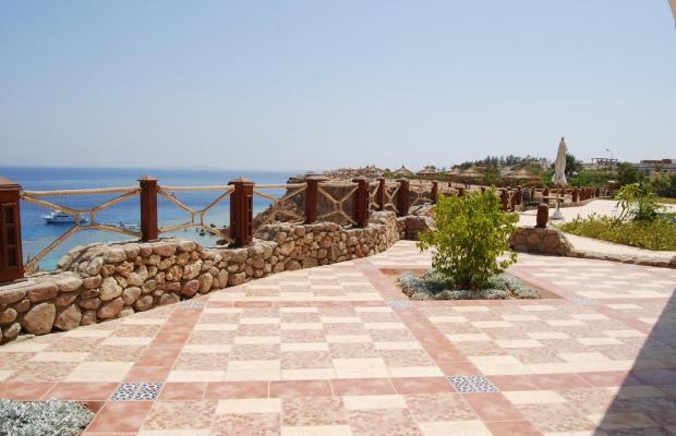фото отеля Club El Faraana Reef Resort изображение №25