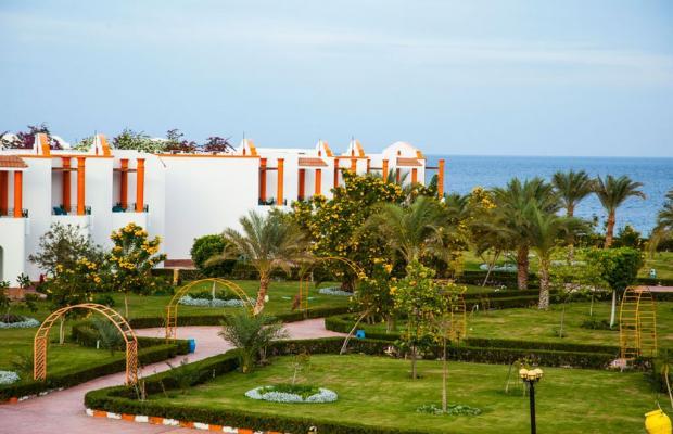 фотографии отеля Fantazia Resort Marsa Alam (ex.Shores Fantazia Resort Marsa Alam) изображение №59