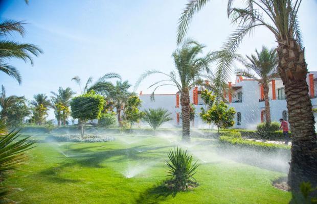фото отеля Fantazia Resort Marsa Alam (ex.Shores Fantazia Resort Marsa Alam) изображение №57