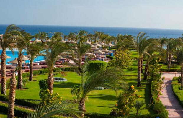 фотографии отеля Fantazia Resort Marsa Alam (ex.Shores Fantazia Resort Marsa Alam) изображение №43