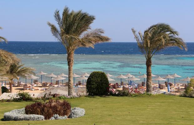 фотографии Fantazia Resort Marsa Alam (ex.Shores Fantazia Resort Marsa Alam) изображение №36