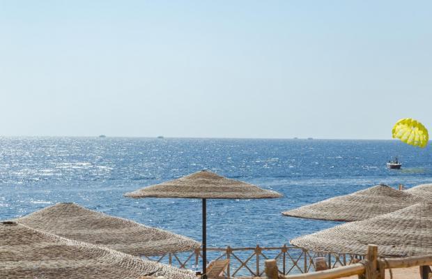 фотографии отеля Coral Beach Resort Tiran (ex. Coral Beach Tiran Rotana Resort) изображение №7