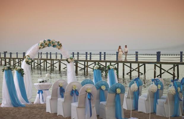 фотографии отеля Coral Sea Holiday Resort (ex. Coral Sea Holiday Village Resort) изображение №15
