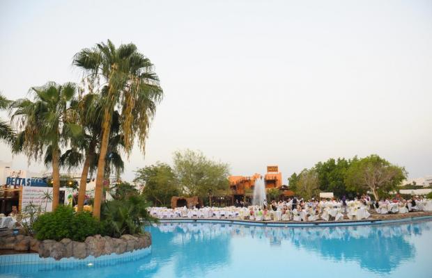 фотографии Delta Sharm изображение №8