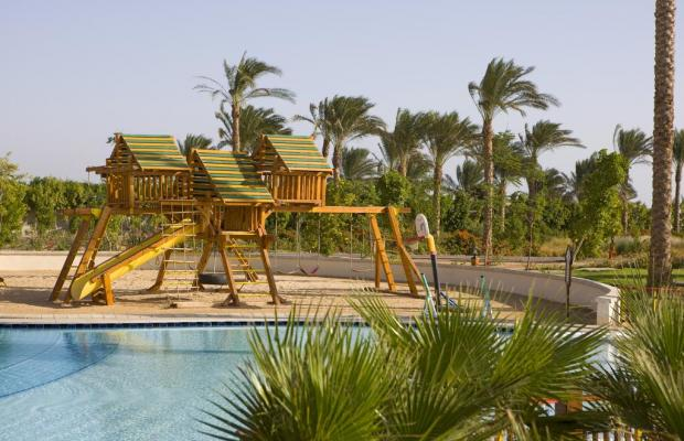 фотографии отеля Steigenberger Al Dau Beach изображение №15