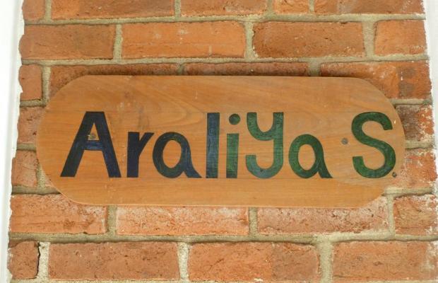 фотографии Villa Araliya изображение №12