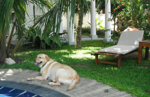 фото отеля Moonstone Villas изображение №13