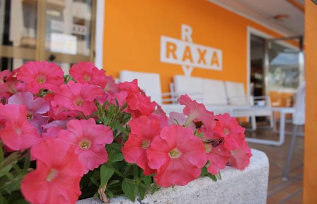фотографии Raxa изображение №4