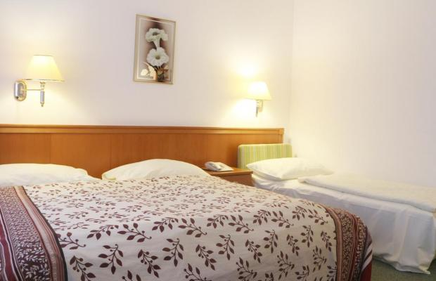 фотографии Hotel Pension Arian изображение №28