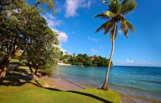 фото Grand Bahia Principe Cayacoa изображение №18