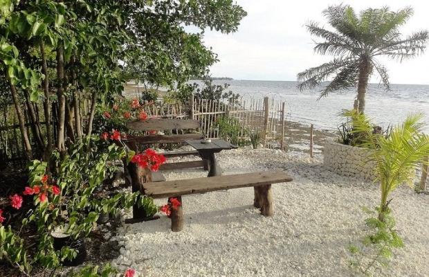 фотографии отеля Sea Turtle House изображение №23