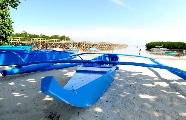 фотографии отеля Virgin Island Resort & Spa изображение №23