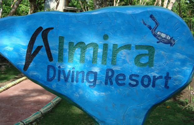 фотографии Almira Diving Resort изображение №20