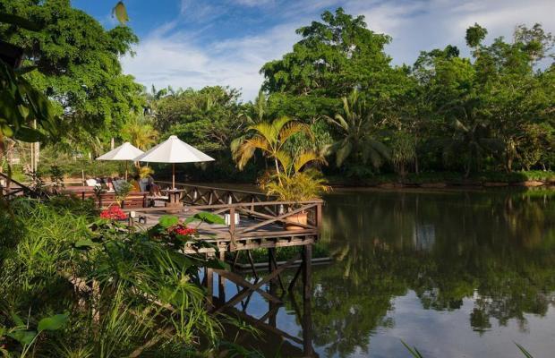 фотографии Sepilok Nature Resort изображение №32