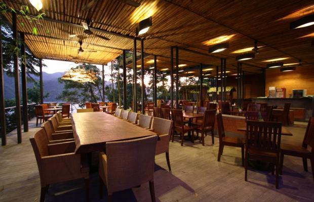 фотографии отеля Belum Rainforest Resort изображение №3
