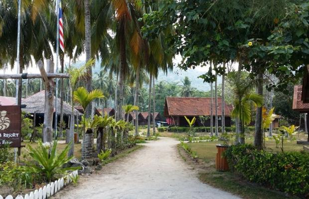 фото отеля Aseania Resort Pulau Besar изображение №29