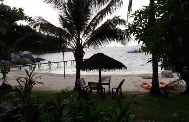фото отеля D Coconut Lagoon изображение №17