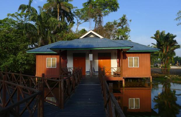 фотографии Firefly Park Resort изображение №8