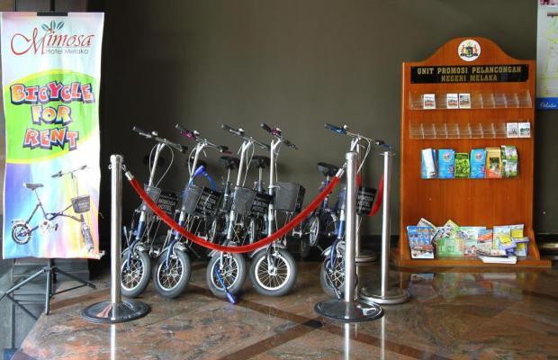 фотографии отеля Mimosa Melaka изображение №27