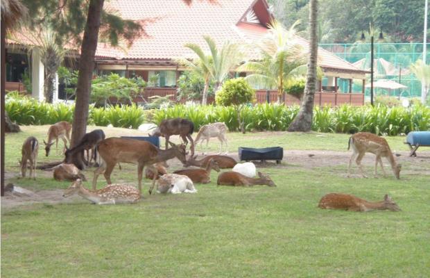 фотографии отеля Sibu Island Resort изображение №31