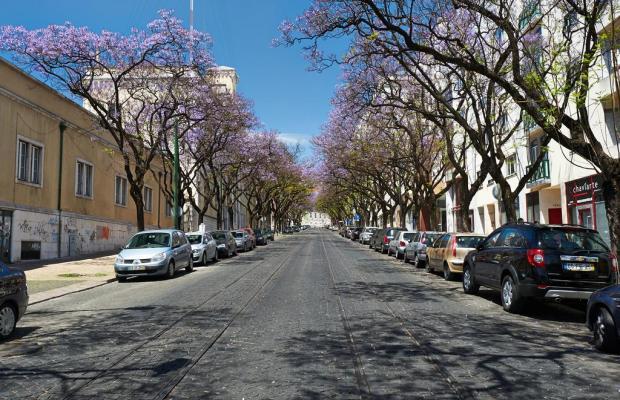 фотографии Portugal Ways Conde Barao Apartments изображение №4